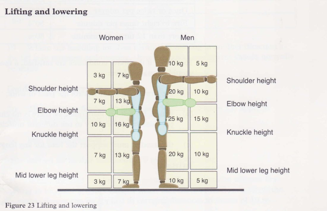 ocena obciążenia układu mięśniowo-szkieletowego